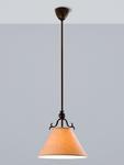 Подвесной светильник L'ARTE LUCE CHALET L17801.03